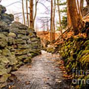 Stone Cold Walkway Print by Jim Lepard