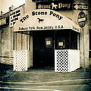 Stone Pony Art Print by Colleen Kammerer
