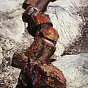 Stone Trees - 337 Art Print