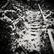 Stony Steps Covered With Snow Art Print