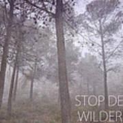 Stop Destroying Forest Wilderness Area Art Print