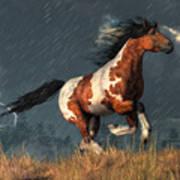 Storm Mustang Art Print