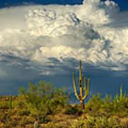 Stormy Desert Skies  Art Print