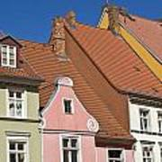Stralsund Roofs. Art Print by David Davies