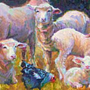 Stranger At The Well - Spring Lambs Sheep And Hen Art Print