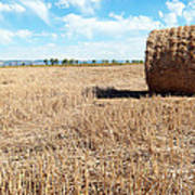 Straw Bales At A Stubbel Field Art Print