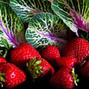 Strawberries And Kale. Art Print