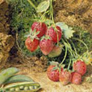 Strawberries And Peas Art Print by John Sherrin