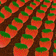 Strawberry Fields Forever Art Print by Andee Design