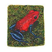 Strawberry Poison Dart Frog Art Print