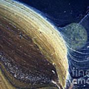 Stream Astronomy 1 Art Print