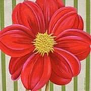 Stripes-dahlia II Art Print