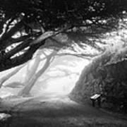Stroll In The Fog Art Print by Valeria Donaldson