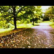 Stroll On An Autumn Lane Art Print