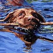 Strong Swimmer Art Print