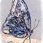 Strutting Her Stuff Art Print by Jill Balsam