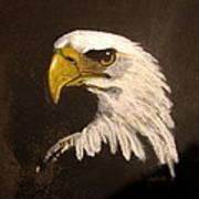 Stuarts Eagle Art Print