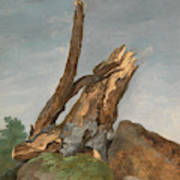 Study Of Rocks And Branches, George Augustus Wallis Art Print