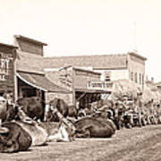 Sturgis South Dakota C. 1890 Art Print