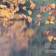 Subtle Autumn Reflections Art Print
