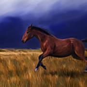 Galloping Horse Painting Art Print