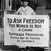 Suffragist 1917 Art Print