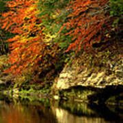Sugar Creek Art Print