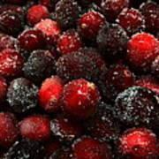 Sugared Cranberries Art Print