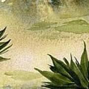 Sumi-e Water Lilies Art Print by Diane Ferron