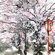 Sumie No.3 Cherry Blossoms Print by Sumiyo Toribe