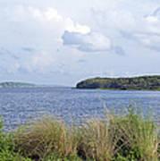 Summer At Guana Lake Art Print