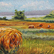 Summer Bales Art Print