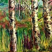 Summer Birch Art Print
