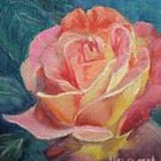 Summer Bloom Art Print