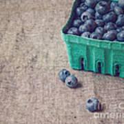 Summer Blueberries Art Print