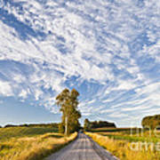Summer Country Road Art Print