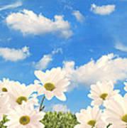 Summer Daisies Art Print by Amanda Elwell