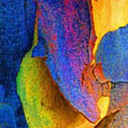 Summer Eucalypt Abstract 11 Art Print