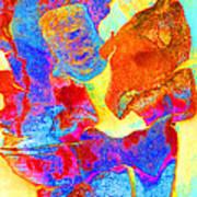 Summer Eucalypt Abstract 28  Art Print