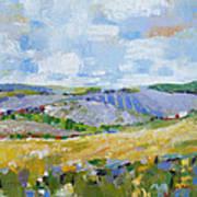 Summer Field 3 Art Print by Becky Kim