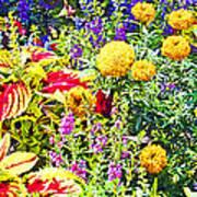 Summer Flower Garden Poster Print Art Print