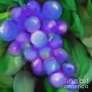 Summer Grape Art Print