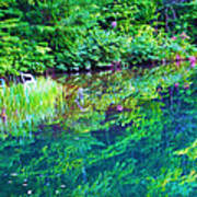 Summer Monet Reflections Art Print