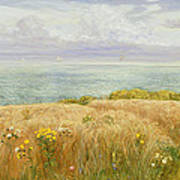 Summer On The Cliffs Art Print