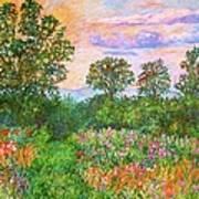 Summer Path At Rock Castle Gorge Art Print