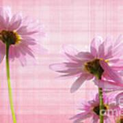 Summer Pinks Art Print