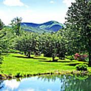 Summer Pond And The Blueridge Art Print