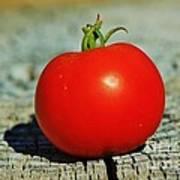 Summer Red Tomato Art Print