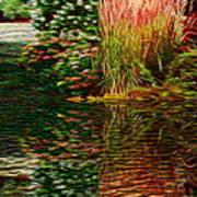 Summer Reflections Art Print
