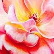 Summer Romance Art Print